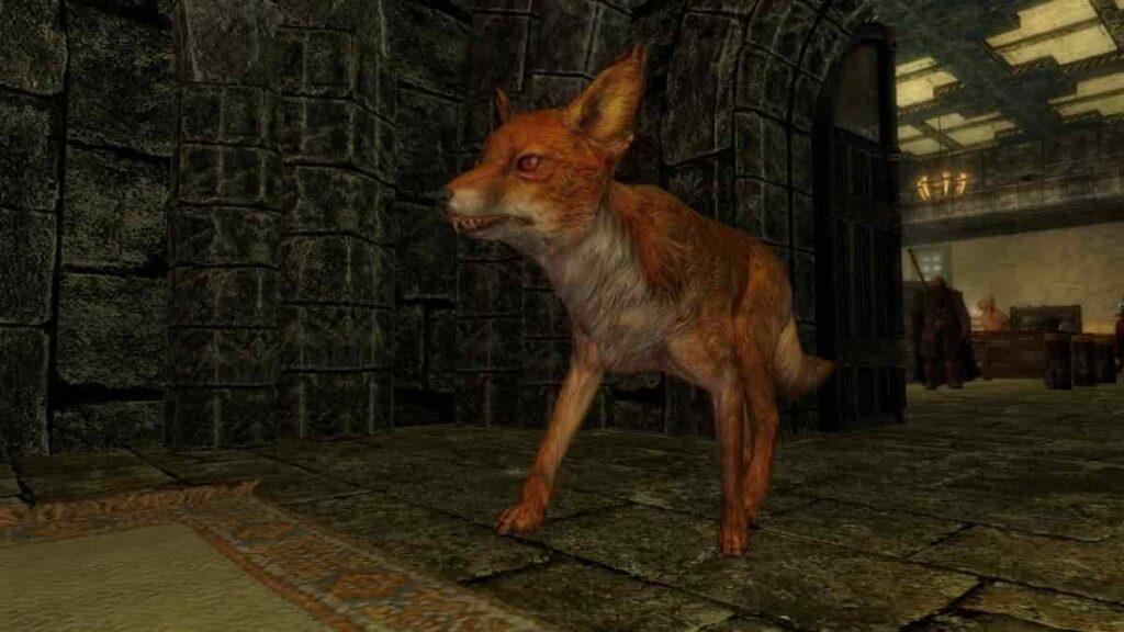 Huyền thoại về 'treasure fox' của Skyrim đã được giải thích