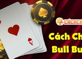 Những điều cần biết về trò chơi Bull Bull